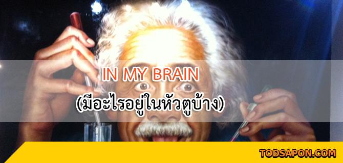 IN MY BRAIN (มีอะไรอยู่ในหัวตูบ้าง) นั่งนิ่ง ๆ แล้วคิดถึงตัวเอง