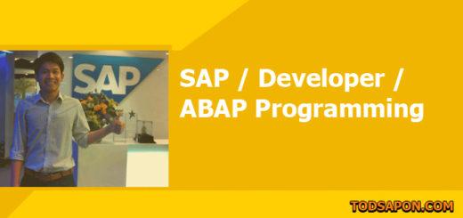 ABAP Code:Show status ของการอ่านข้อมูล ใน Internal Table บน Status Bar เป็นเปอร์เซนต์