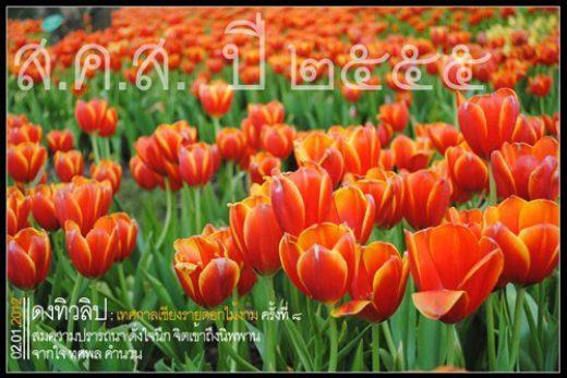 ส.ค.ส ปีใหม่ ปี ๒๕๕๕ จากใจ Todsapon.com